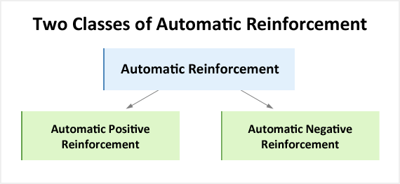 Automatic reinforcement shown broken down into positive and negative reinforcement.