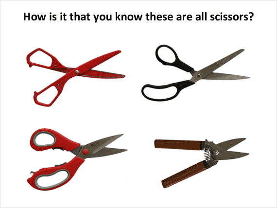 Stimulus generalisation shown through the ability to realise these are all types of scissors.