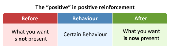 Showing how positive reinforcement is the addition of something you wanted after engaging in a certain behaviour.